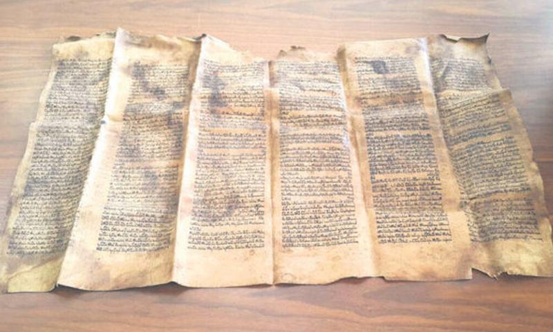 نسخة توراة عمرها 600 عام، كتبت على جلد حوت (الأناضول).