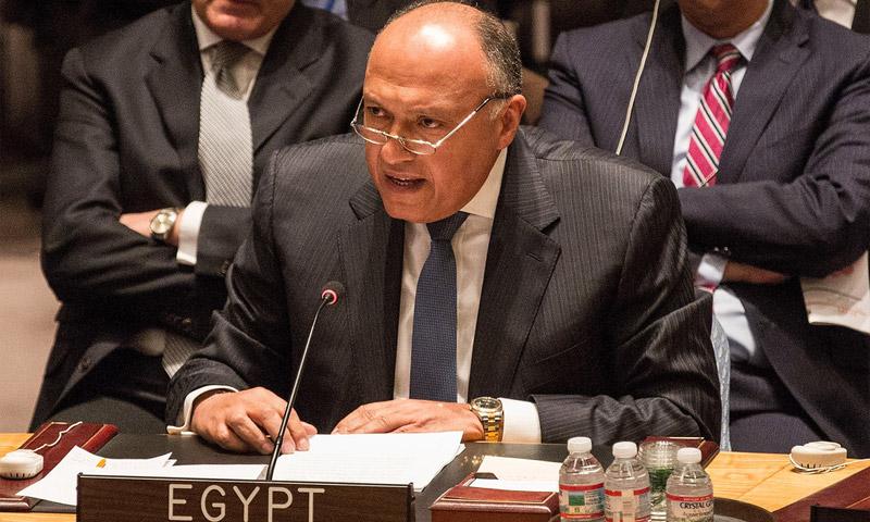 مندوب مصر الدائم لدى الأمم المتحدة، عمرو عبد اللطيف.
