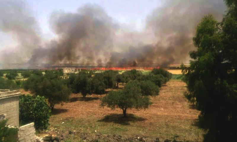 احتراق الأراضي الزراعية في بلدة نافعة في حوض اليرموك غرب درعا، الاثنين 16 أيار (ناشطون).