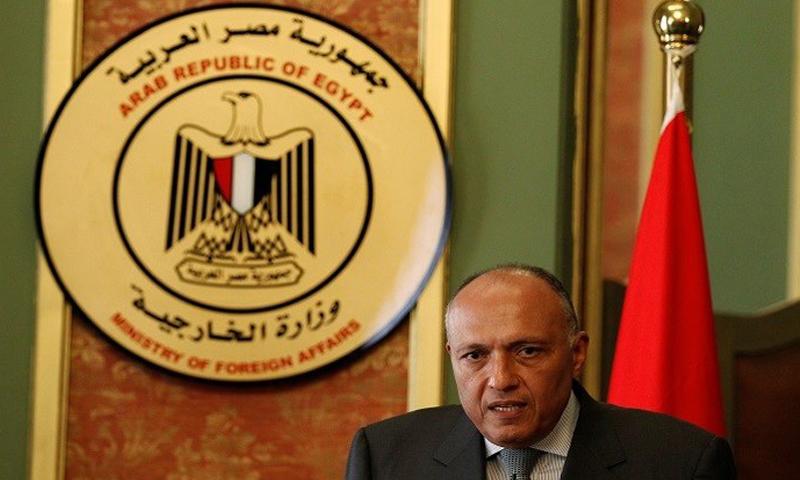 وزير الخارجية المصري سامح شكري (إنترنت)