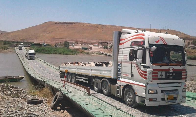 """سيارات تصدير الأغنام عبر """"سيمالكا"""" إلى """"كردستان العراق"""" (إنترنت)"""