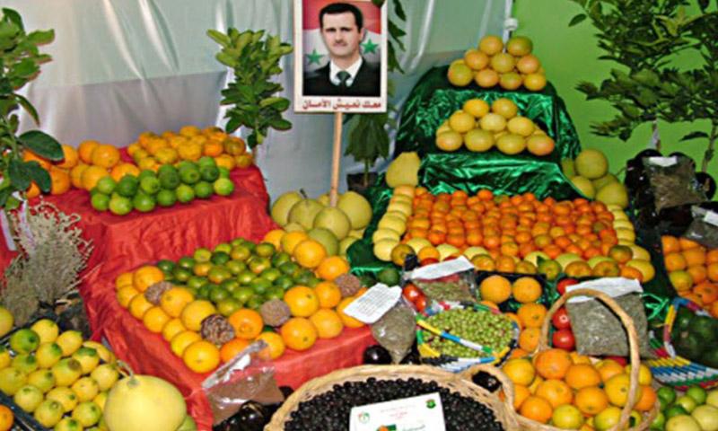 حمضيات سوريّة تتوسطها صورة رئيس النظام السوري، بشار الأسد (قناة العالم)
