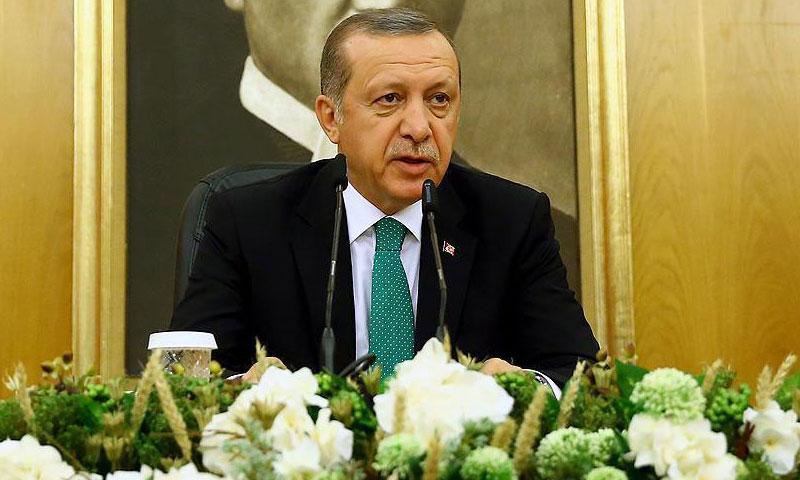 الرئيس التركي، رجب طيب أردوغان (الأناضول)