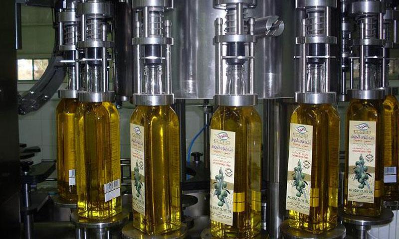 أرشيفية- أحد معامل تصنيع زيت الزيتون في سوريا (إنترنت)