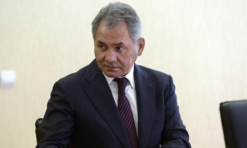 وزير الدفاع الروسي سيرغي شويغو (سبوتنك)