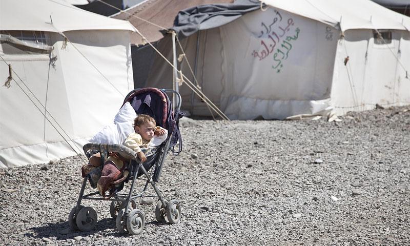 طفل سوري في مخيم في تركيا (IRIN)
