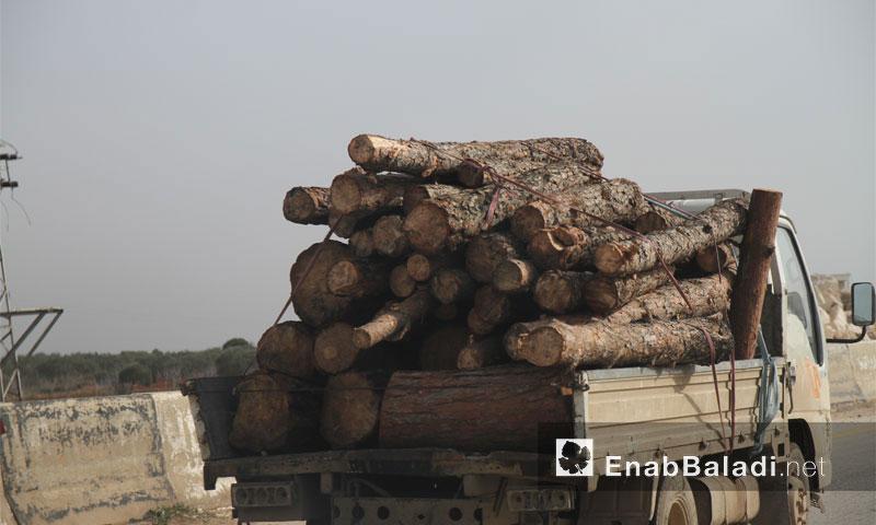 سيارة حطب في ريف إدلب- أيلول 2016 (عنب بلدي)