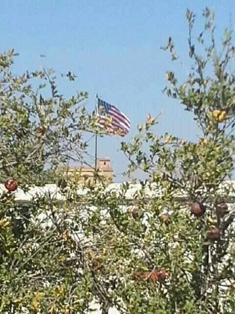 """صورة نشرتها حملة """"الرقة تذبح بصمت"""" وذكرت أنها في قرية المنبطح بريف تل أبيض - 15 أيلول"""