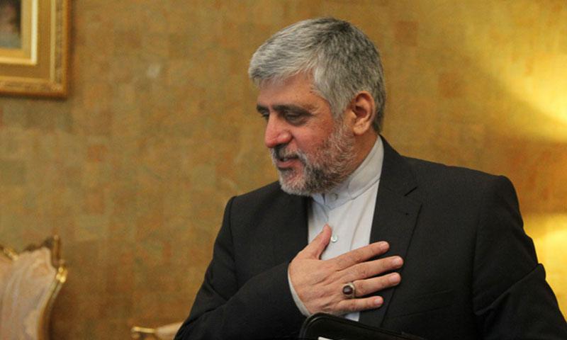 محمد رضا رؤوف شيباني (إنترنت)
