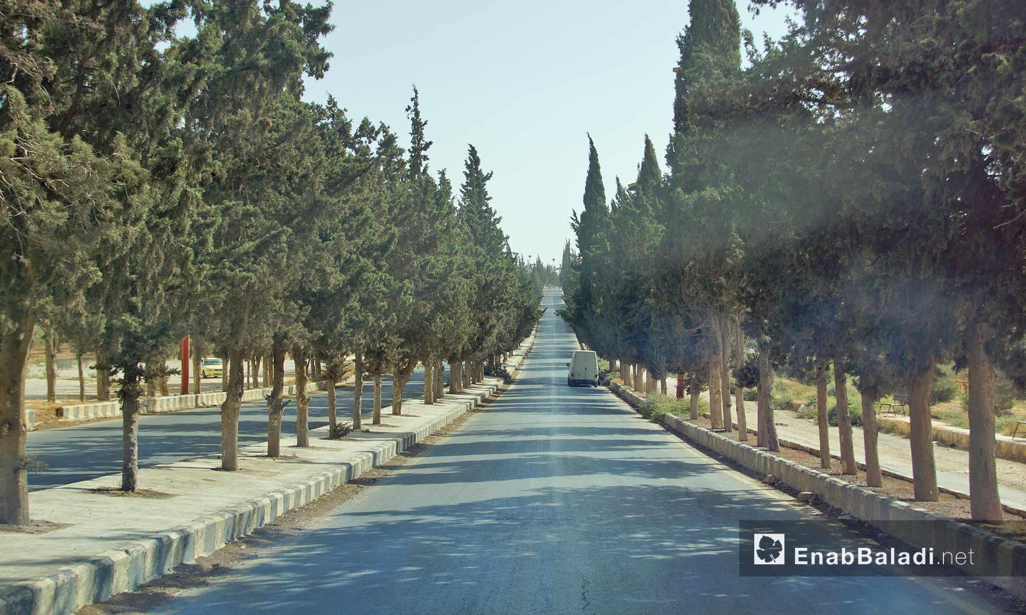 طريق أريحا آخر مدينة إدلب - 14 تشرين الأول 2016 (عنب بلدي)