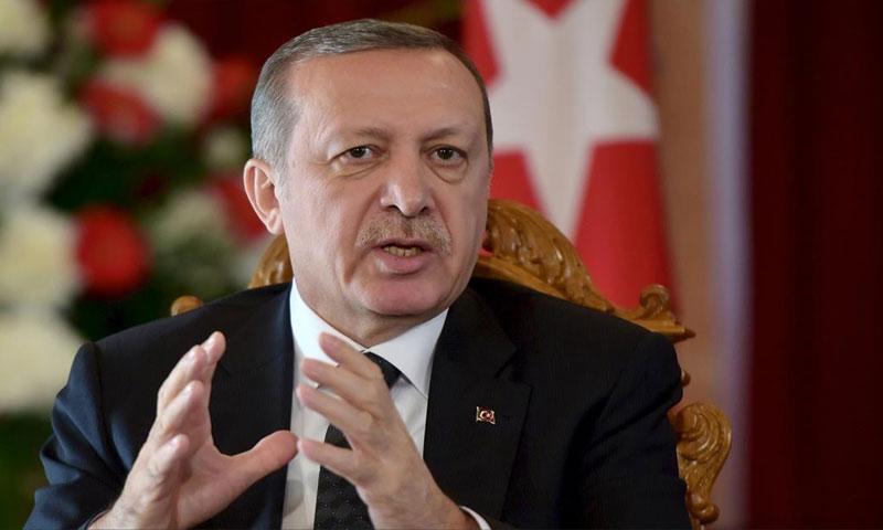 الرئيس التركي رجب طيب أردوغان - (انترنت)