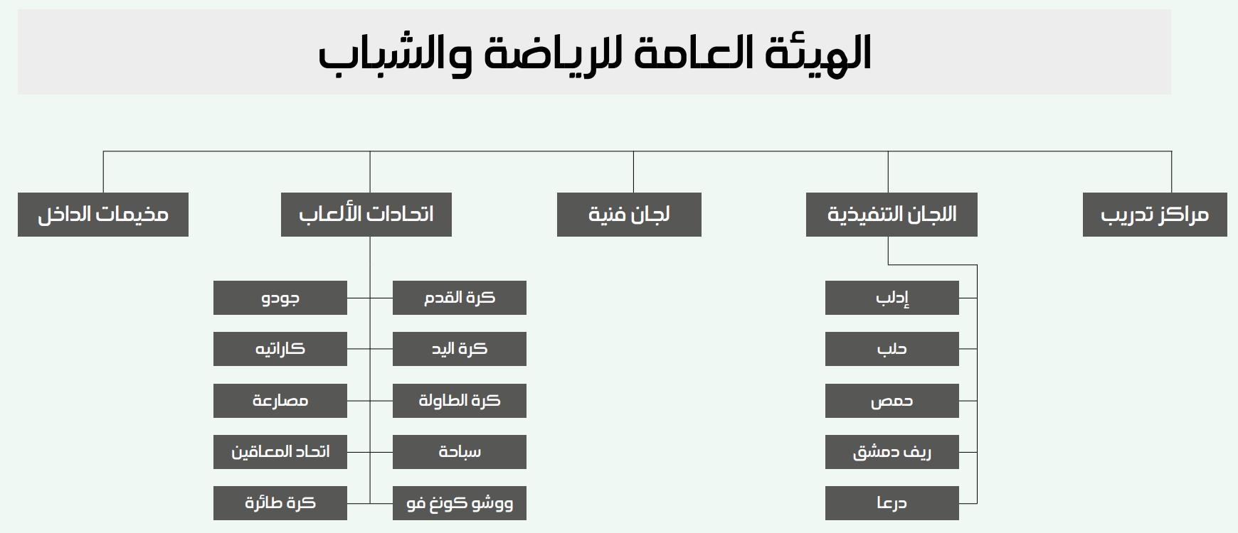 مخطط يظهر هيكلية الهيئة العامة للشباب والرياضة (عنب بلدي)