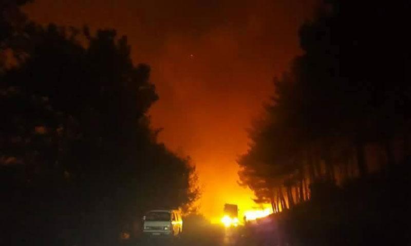 حرائق في ريف القرداحة بمحافظة اللاذقية- الأحد 20 تشرين الثاني (فيس بوك)