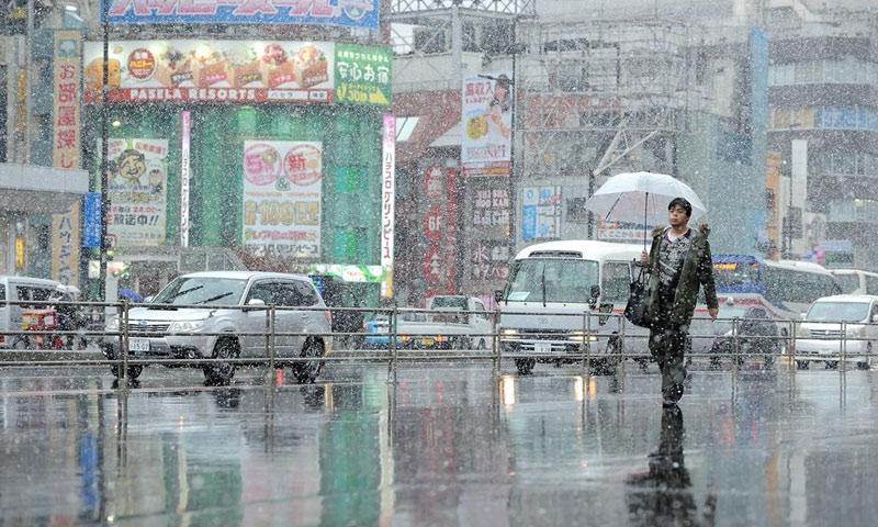 تساقط الثلوج في العاصمة اليابانية طوكيو - الخميس 24 تشرين الثاني - (انترنت)