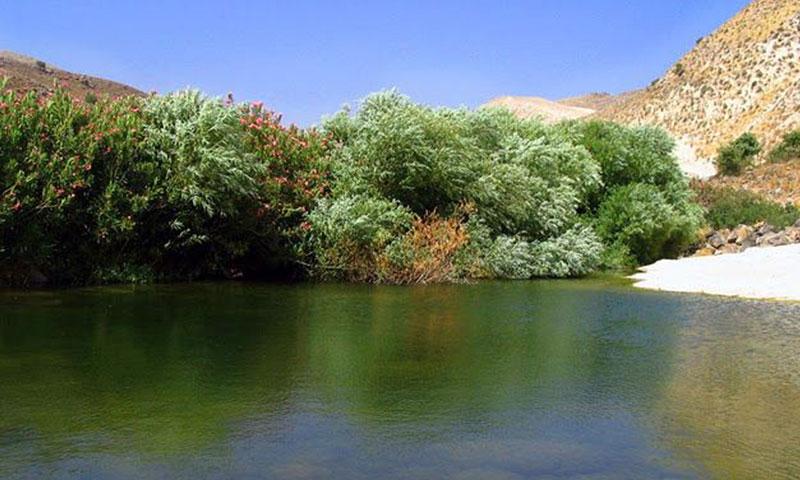 كفرالما منطقة غنية بالمياه والينابيع تقع في حوض اليرموك بريف درعا الغربي (فيس بوك)