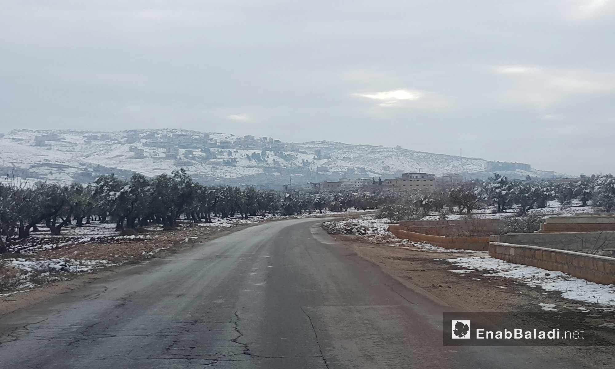 الثلوج في جبل الأربعين بريف إدلب_18 كانون الأول_(عنب بلدي)