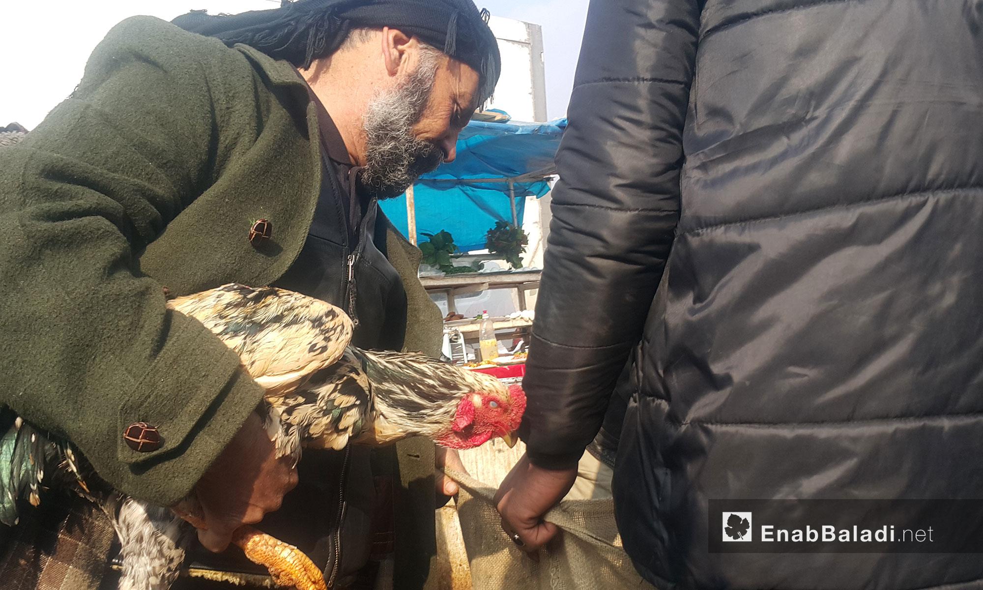 بائع دواجن في سوق الطيور بمعرة مصرين - 20 كانون الثاني 2017 (عنب بلدي)