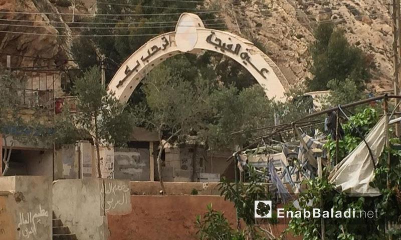 منطقة عين الفيجة في وادي بردى (عنب بلدي)