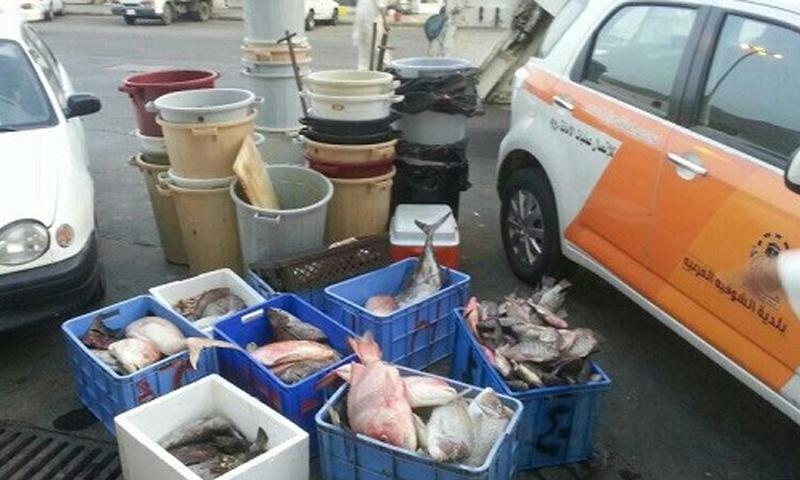 صورة تناقلها سعوديون على أنها في سوق السمك في عسير (تويتر)