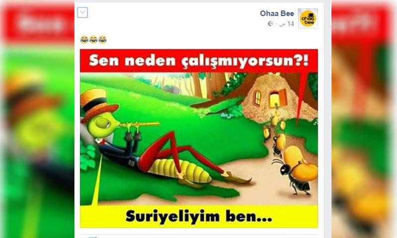 الصورة الساخرة باللاجئين السوريين - (فيس بوك)
