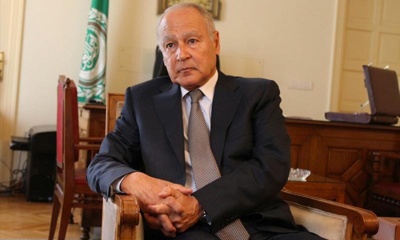 الأمين العام للجامعة العربية أحمد أبو الغيط (إنترنت)
