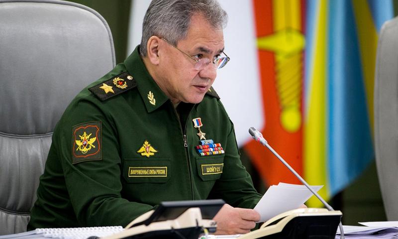 وزير الدفاع الروسي، سيرغي شويغو - (سبوتنيك)