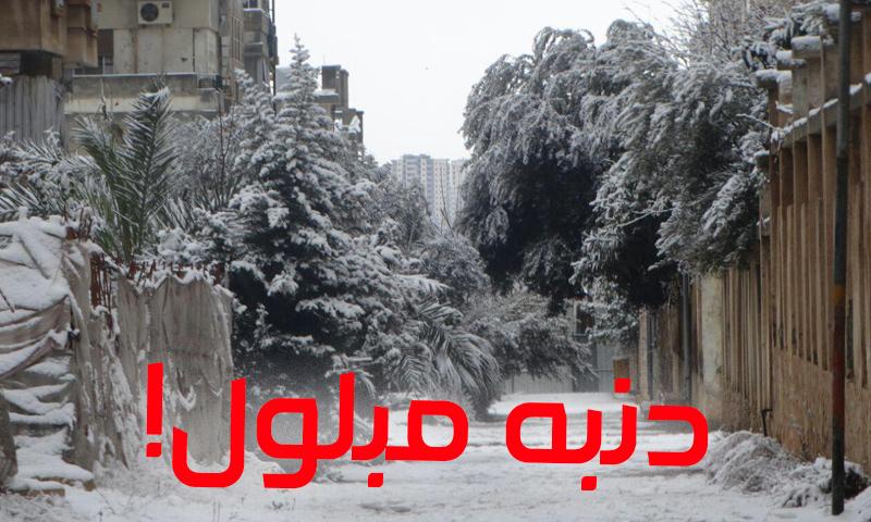 الثلوج تزور مدينة حمص في 2017 (عنب بلدي)