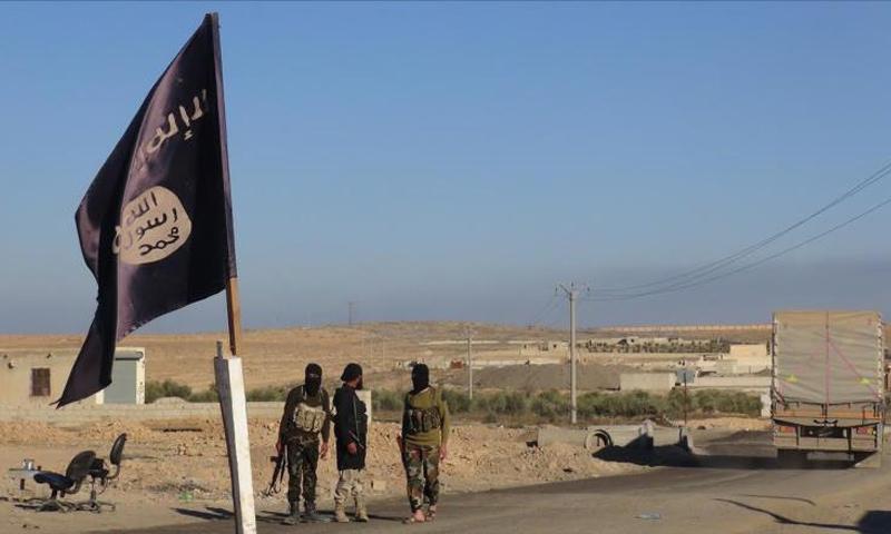 عناصر من تنظيم الدولة الإسلامية على اطراف مدينة الرقة - (انترنت)