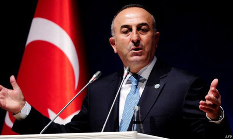 وزير الخارجية التركي مولود جاووش أغلو (AFP)