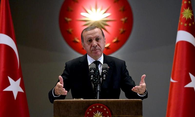 الرئيس التركي رجب طيب أردوغان (NTV)