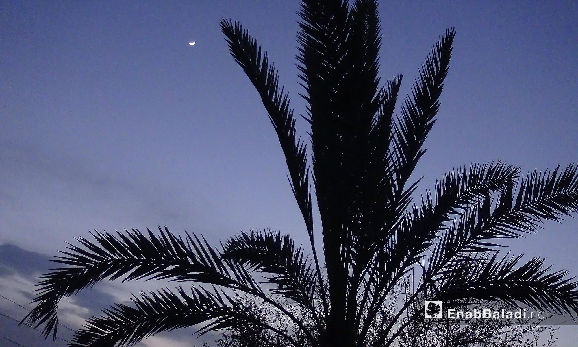 بلدة كفرجالس بإدلب وقت غروب الشمس  - 4 نيسان 2017 (عنب بلدي)