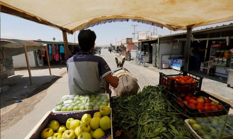 لاجئ سوري يبيع الخضرة في مخيم الزعتري على الحدود الأردنية السورية (رويترز)