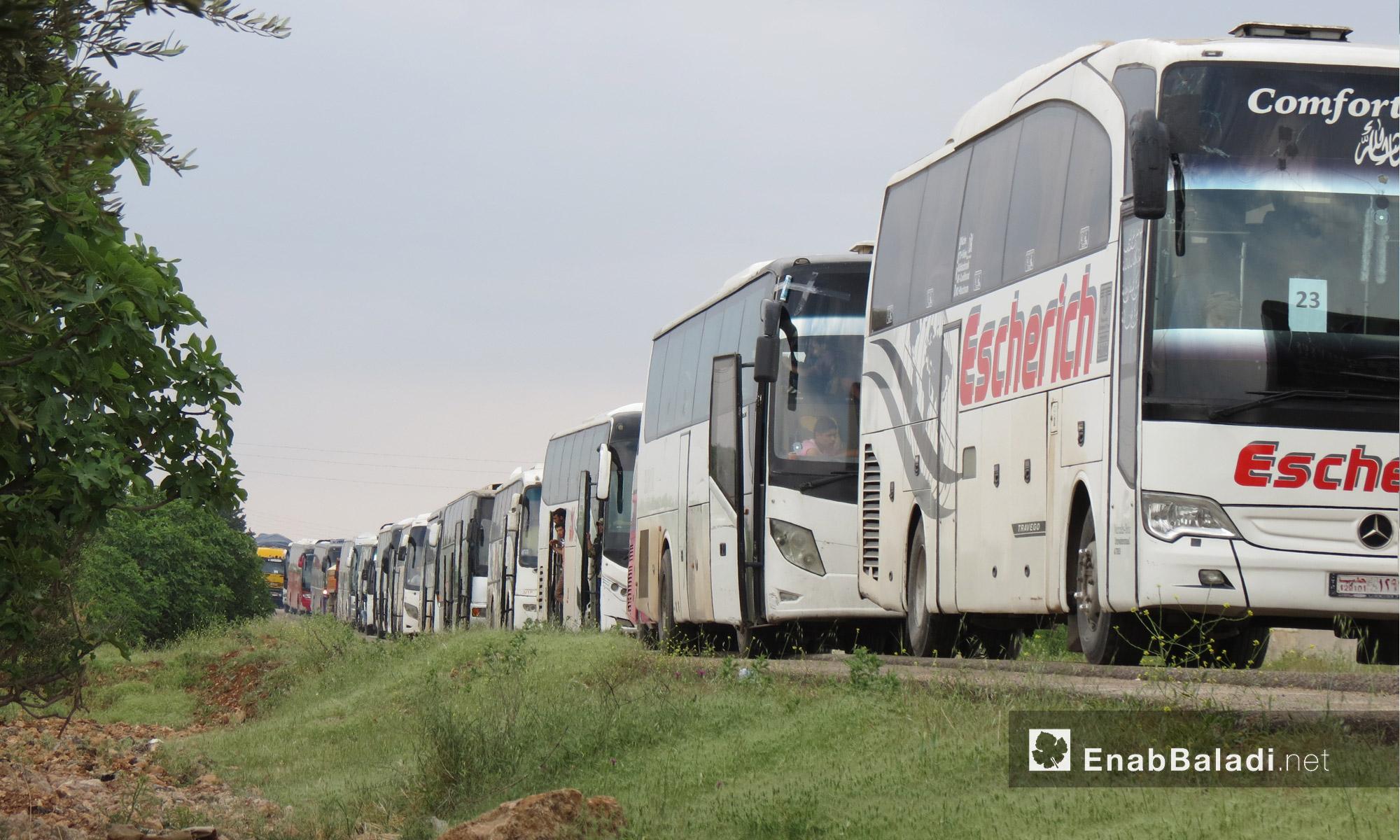 حافلات مهجري الوعر في قرية تل بطال قرب جرابلس شمال حلب - 5 أيار 2017 (عنب بلدي)