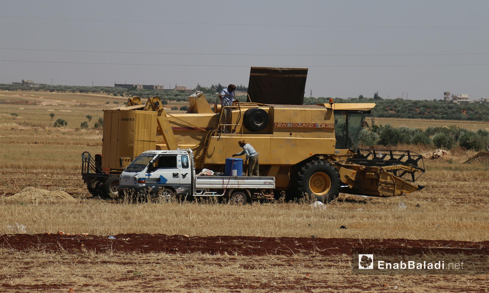 حصادة القمح تحصد المحاصيل بعد نضوجها في أراضي إدلب الزراعية - 12 حزيران 2017 (عنب بلدي)