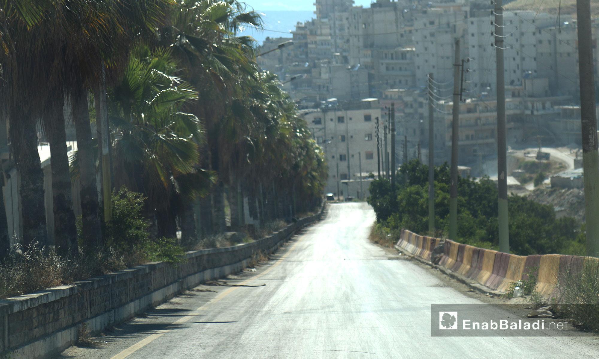 بلدة سلقين في ريف إدلب الغربي - 21 حزيران 2017 (عنب بلدي)