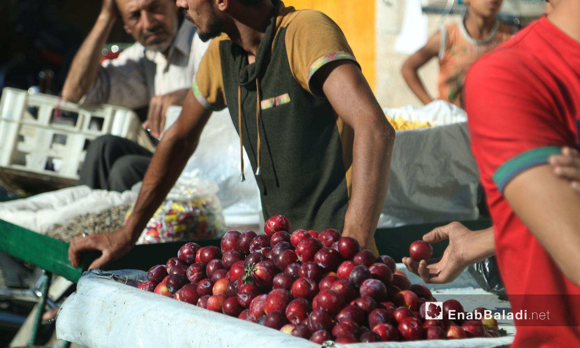 بائع فاكهة في بلدة سلقين بريف إدلب - 21 حزيران 2017 (عنب بلدي)