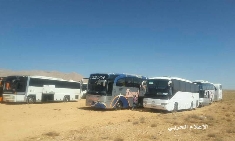 الحافلات التي ستقل مقاتلو تنظيم الدولة إلى دير الزور - 28 آب 2017 (الإعلام الحربي)