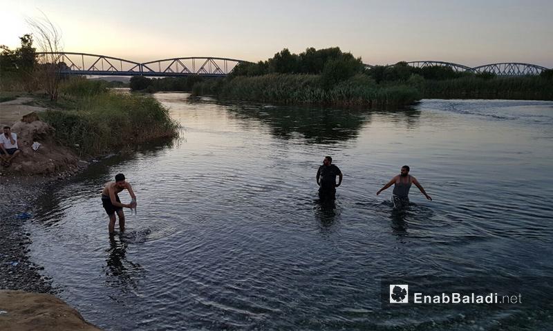 شبان من ريف حلب الشمالي يمارسون السباحة في نهر الفرات - 5 آب 2017 (عنب بلدي)