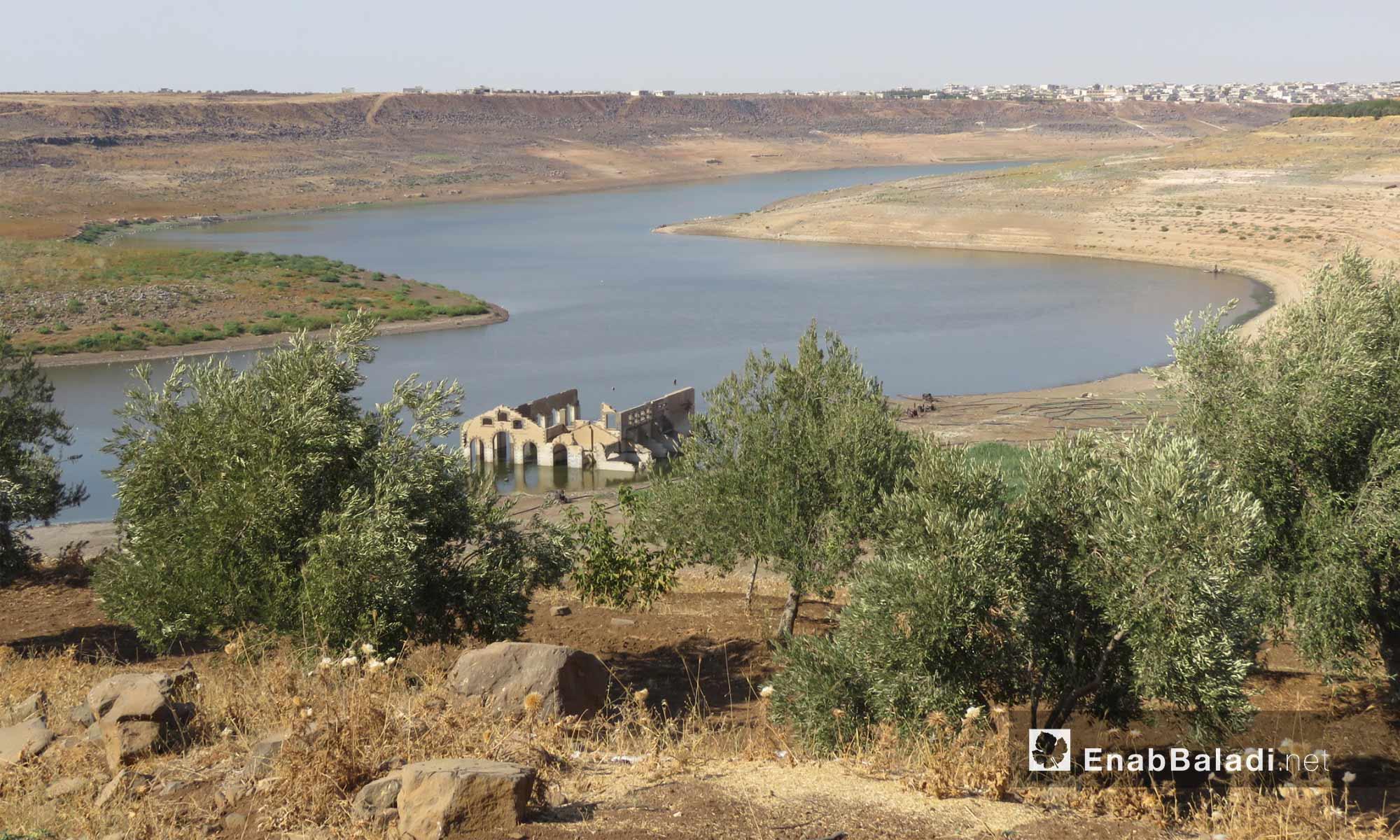 بحيرة سد الرستن في ريف حمص الشمالي - 9 أيلول 2017 (عنب بلدي)
