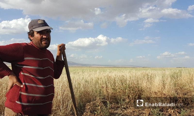 مزارع في ريف القامشلي في محافظة الحسكة - 20 أيار 2017 (عنب بلدي)