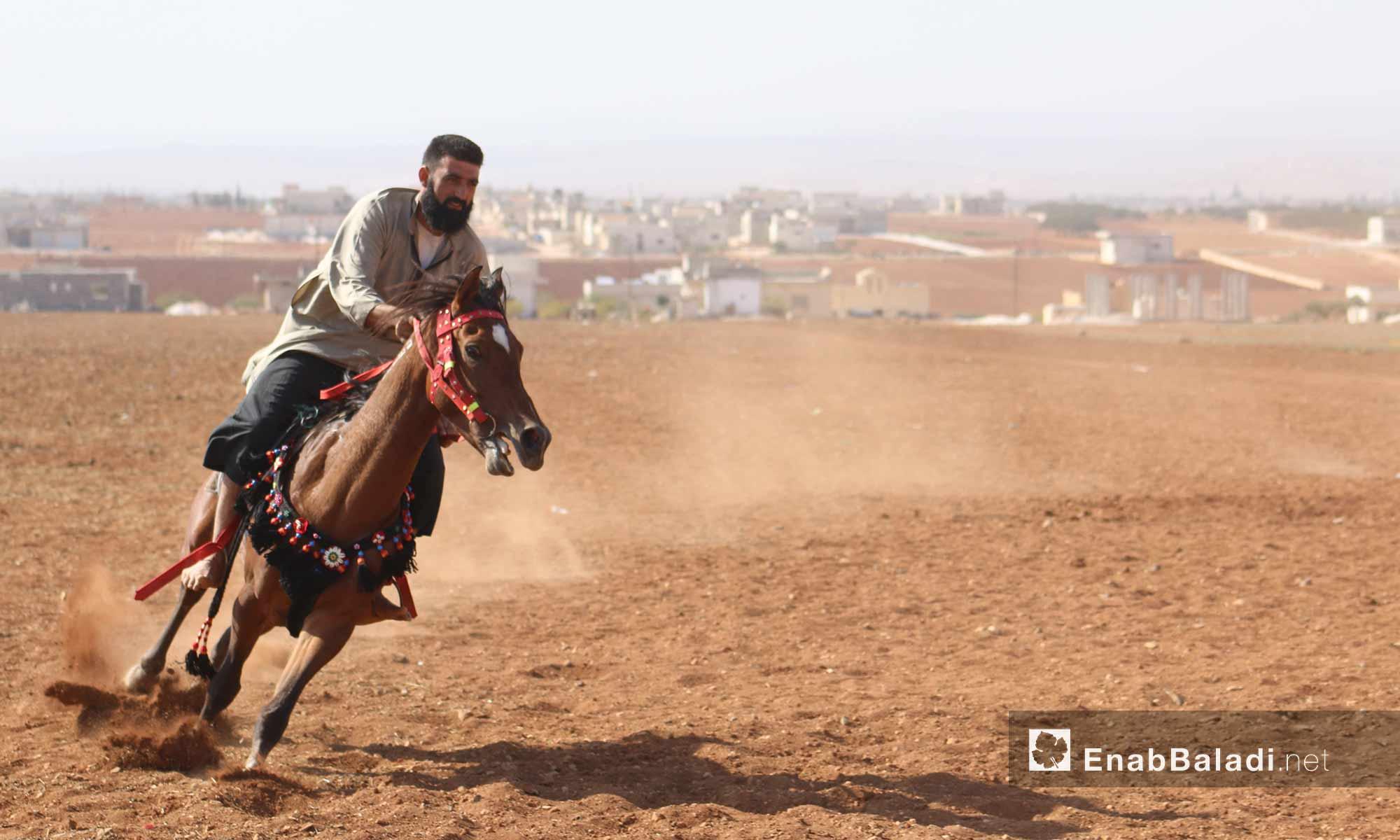 سباق مهرجان البادية للخيول العربية الأصلية في ريف حلب - 13 أيار 2017 (عنب بلدي)