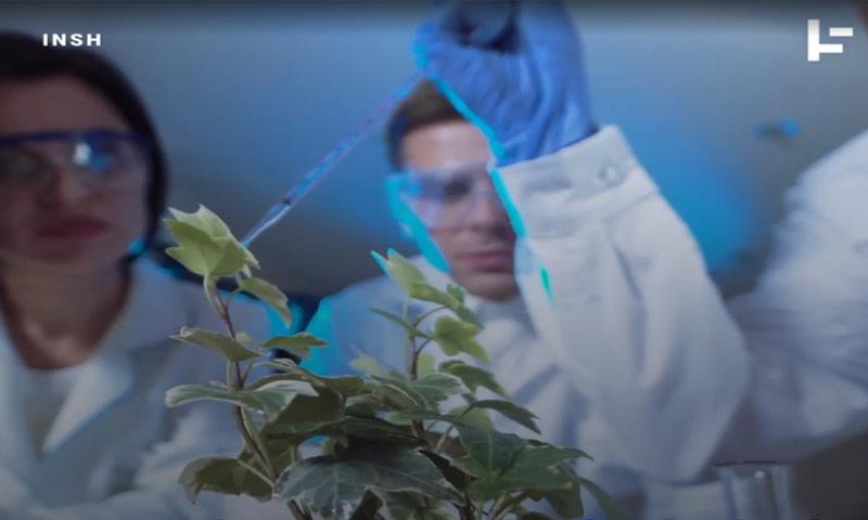 علماء يجرون تجارب على النباتات (Timeline)