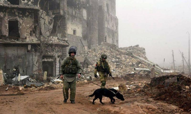 عناصر من الشرطة الروسية في مدينة حلب - (سبوتنيك)