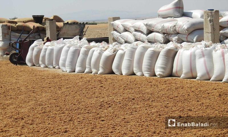 مراحل تحويل القمح إلى البرغل في أحد مطاحن ريف حلب الشمالي - 24 آب 2017 (عنب بلدي)