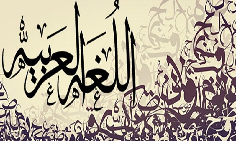 اللغة العربية (تعبيرية)