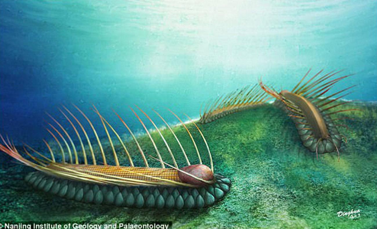 المخلوق البحري المنقرض كما تخيله العلماء بناءً على البقايا التي عثروا عليها (dailymail)