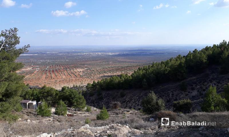 قمة جبل برصايا شرقي منطقة عفرين - 28 كانون الثاني (عنب بلدي)