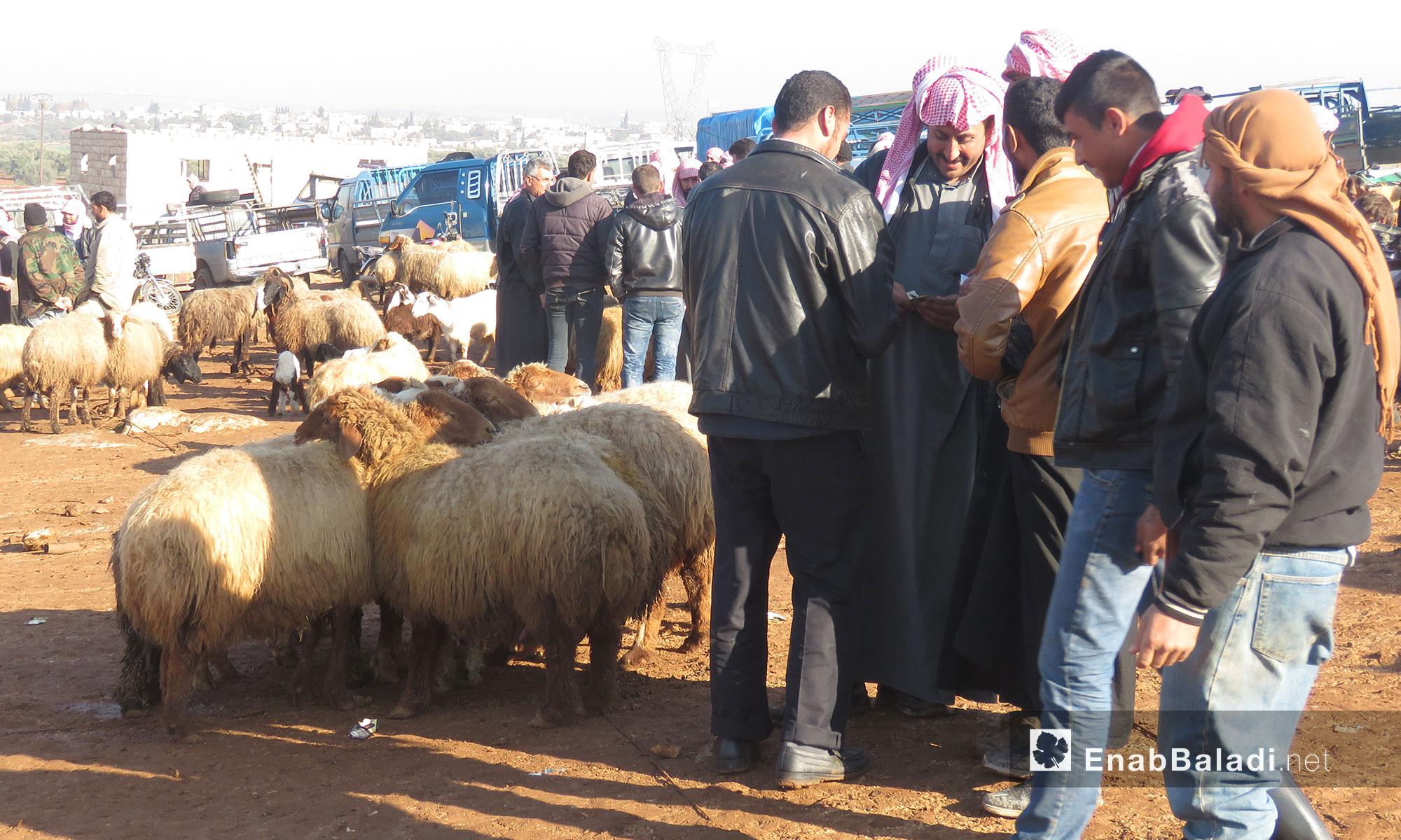 سوق الغنم بريف ادلب الجنوبي - 28 كانون الثاني 2018 (عنب بلدي)