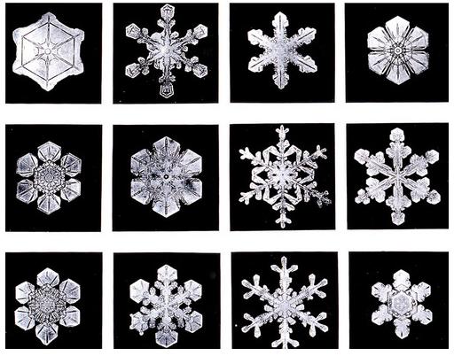 مجموعة صغيرة من ندف الثلج التي صورها ويلسون بنتلي
