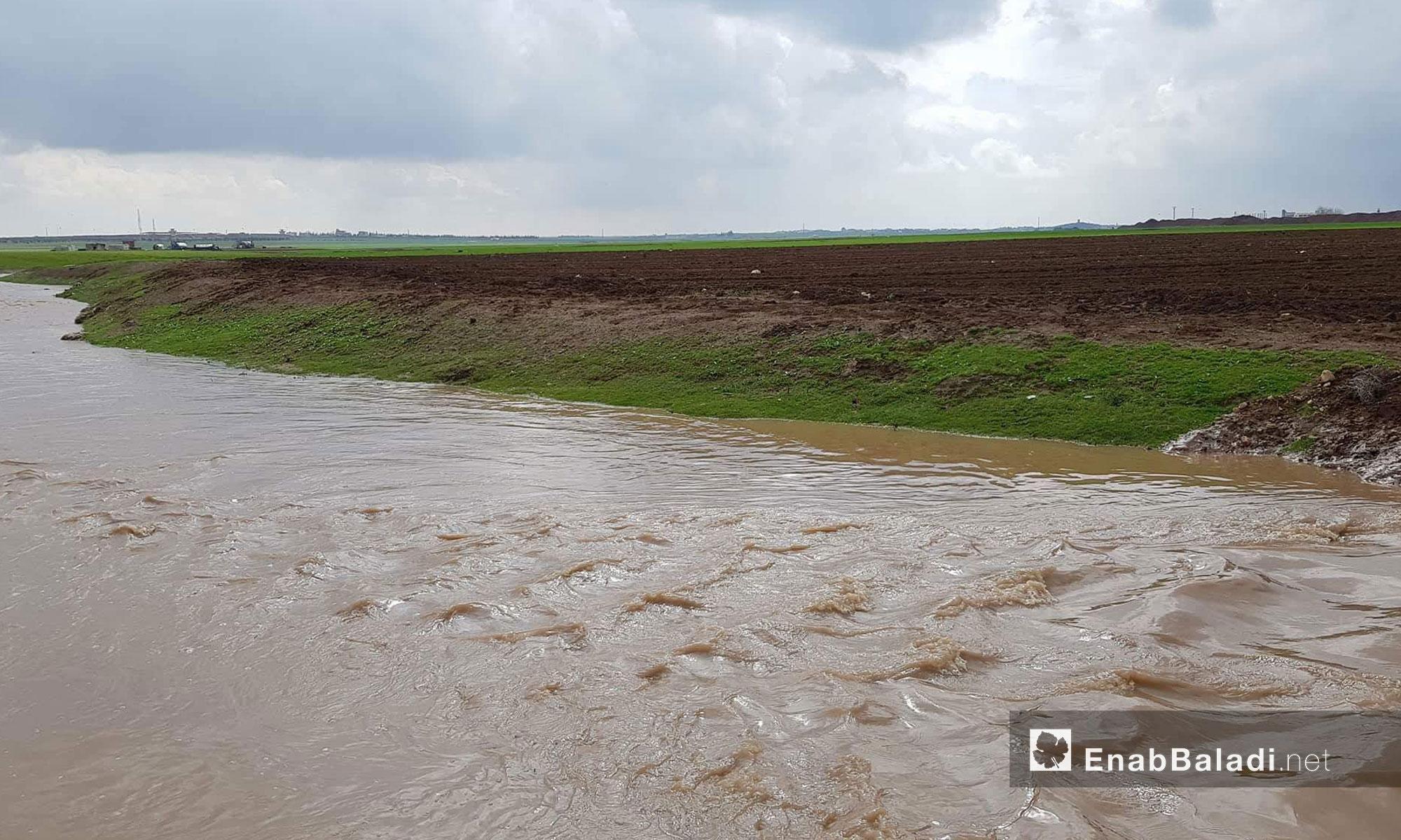 نهر قويق يعود إلى الجريان  بعد انقطاع طويل شمالي حلب - 28 شباط 2018 (عنب بلدي)